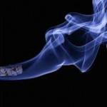 【MO】アルトリアの企業分析(2016年版)-2017年10月に8.2%増配で48年連続増配となった米国のたばこ・ワイン製造で世界最大手の高収益な配当貴族銘柄